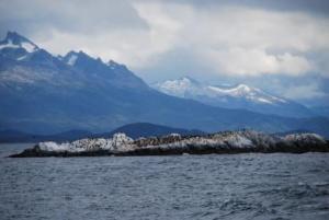 île des cormorans