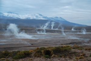 Le champ de geysers d'El Tatio au petit matin