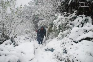 On dirait bien que l'hiver est arrive en NZ