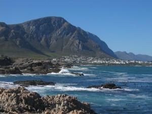Hermanus, la ville ou 'on a vu des baleines nager a 20m du rivage
